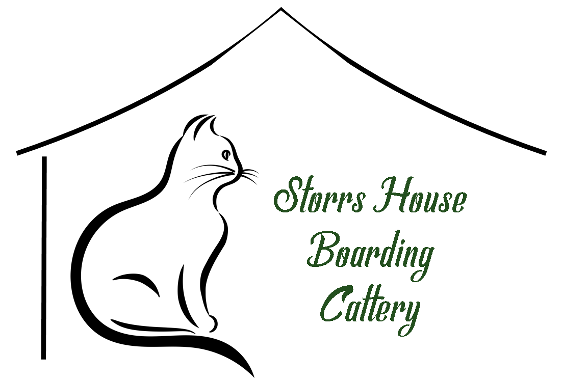 Welcome to Storrs House Boarding Cattery